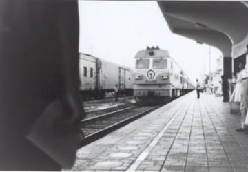 medium_Train.jpg